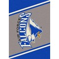 Milliken College Team Spirit (NCAA) Air Force 68870 Spirit Rectangle (4000019064) 3