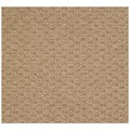 Capel Rugs Creative Concepts Raffia - Octagon 10