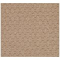 Capel Rugs Creative Concepts Grassy Mountain - Octagon 12