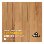 Raskin Elevations Prodigy: Cheshire Luxury Vinyl Plank R-FPP-5005