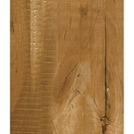 Armstrong Nature's Gallery Collection Exotics : Lustre Cut Camelback 8mm Laminate L4015